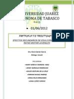 Trabajo de Proyecto Revisado Dra Rocio[1]