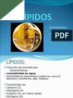 LÍPIDOS11L
