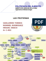 PROTEINAS Exposicion Power Point