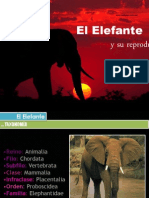 EL ELEFANTE Y SU REPRODUCCIÓN