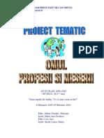 proiect_meserii_2010