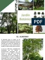 Proyecto Jardin Botanico