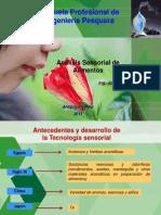Analisis Sensorial INTRODUCCION