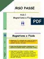 01 Magnetismo e Fluido