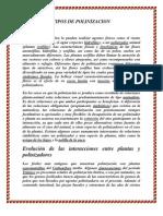 Tipos de Polinizacion de Deber de Lis
