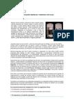 Emprendimientos,pequeñas empresas y empresas virtuales - MODULO 4