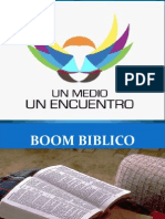 Boom Biblico