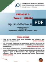 Tema 01 Celula Procariota y Eucariota