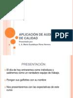 APLICACIÓN DE AUDITORIAS DE CALIDAD
