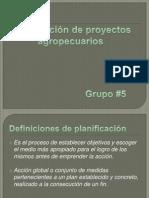 Planificacion proyectos agropecuarios