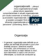 Curs 1 Organizationala