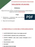 14. Infiammazione 1 - Dinamica Del Processo Infiammatorio 2012