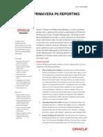 p6 Reporting Database Data Sheet 080568