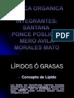 lipidosograsas-090527230153-phpapp02