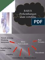 BAB-IX