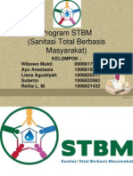 Program STBM