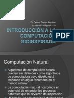 01_Introduccion a La Computacion Bioinspirada