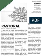Boletim Semanal 10/06/2012 a 16/06/2012