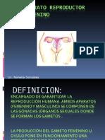 APARATO REPRODUCTOR  FEMENINO 2012 (1)