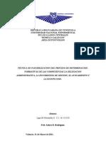 Trabajo de Postgrado La Delegacion, Sustitucion, Administrativas Entre Otras