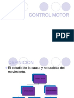 Control Motor Ppt.