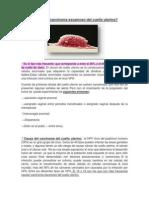 carcinoma escamoso del cuello uterino