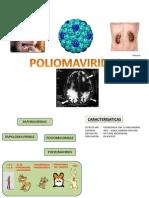 Expo de Virologio Poliomaviridae