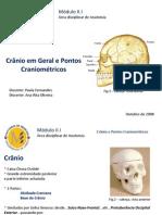 Crânio em Geral e Pontos Craniométricos