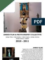 Amber Report 2010_11