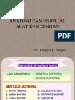 Anatomi Dan Fisiologi Alat Kandungan