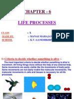 6 Life Processes