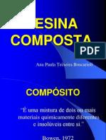 Resina (1)