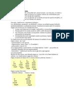 -3hidratos de c (2)