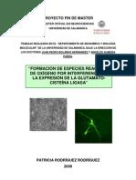 TFM Neurociencias Rodriguez Rodriguez Patricia