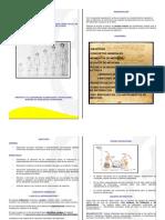 Toma y Registro de Medidas Antropometricas (Peso-talla) en Los