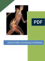 Informe Anatomia Luz y Ale