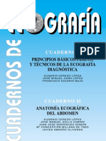 ECOGRAFIA-PRINCIPIOS BASICOS