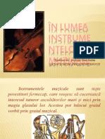 Instrument e Muzi Cale
