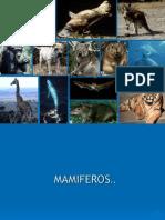 Fisiología mamiferos, etc