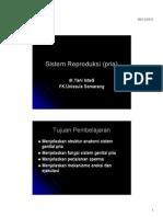 Microsoft PowerPoint - Sistem Genitalia Male (Pria).Ppt [Compatibility M(1)