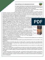 GUÏA DE ESTUDIO-Clasificación y Usos del Suelo
