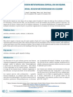 Articulo5 Injerto Piel
