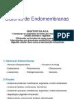 Aula - Endomembranas