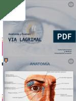 Via LAGRIMAL_anatomia y Examen