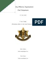 Building Effective Organizations Assignment
