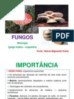 Aula 5 Fungos
