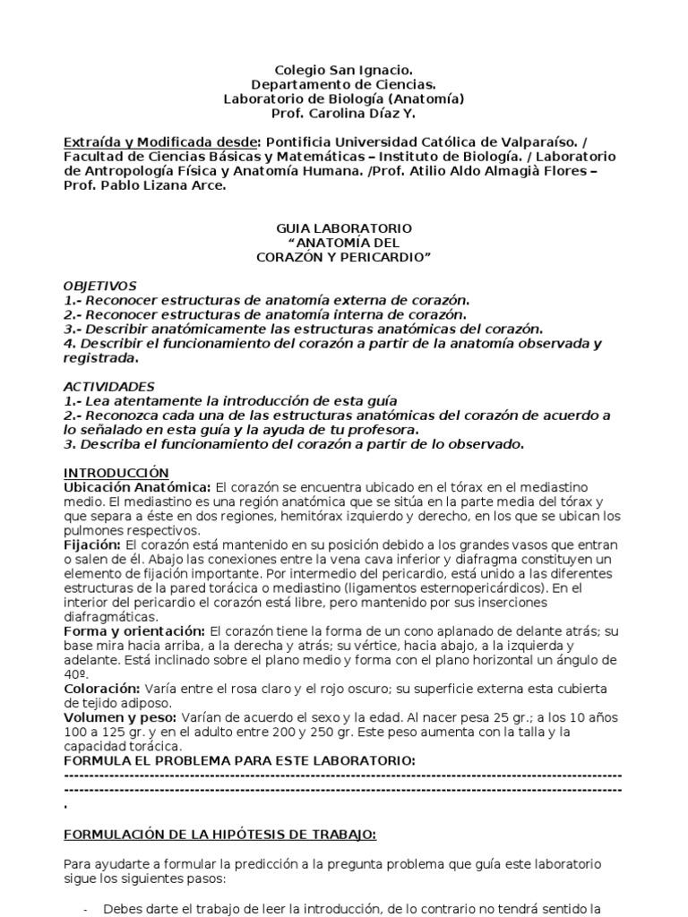 17 728e97 Guia Diseccion Corazon.
