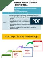 Tatap Muka II (Diagnosis)