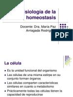 Fisiología de la homeostasis-1 (1)
