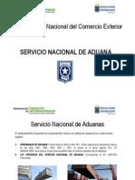 Aduana - PPT - PDF Prueba Ordenanza y LO.